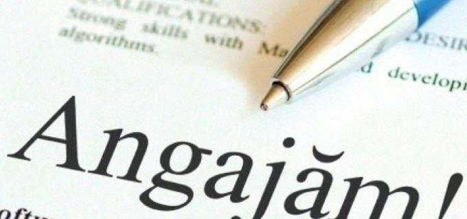 Firmă din Sebeș angajează Inginer Planificare Calitate