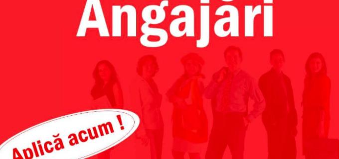 Cauți un loc de muncă? CLICK aici pentru a afla toate posturile vacante din municipiul Sebeș: